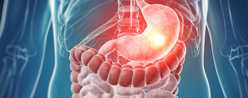 Scoala de vara de gastroenterologie